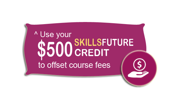 SkillsFuture Master Excel Course Singapore